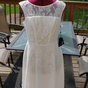 NWT Adrianna Papell white lace dress sz 8